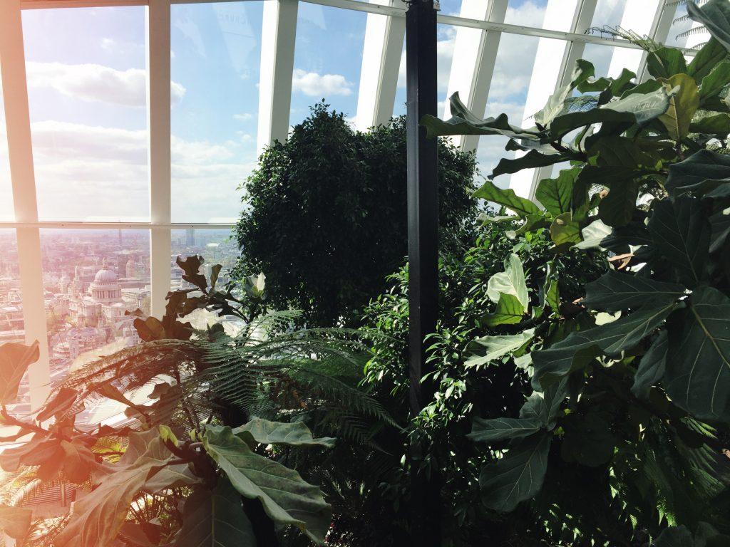 the_sky_garden (31)
